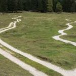 Scegliere tra ciò che è giusto da ciò che è facile  – Cinzia Sorvillo